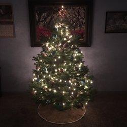 Christmas Tree Jamboree - 30 Photos & 47 Reviews - Christmas Trees ...