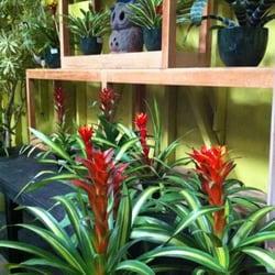 Tropical Garden Accents CLOSED 14 Photos Nurseries