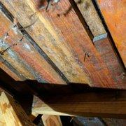 Mildew/mold Photo Of Allways Roofing   Snohomish, WA, United States.