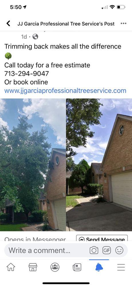 JJ Garcia Professional Tree Service: Humble, TX