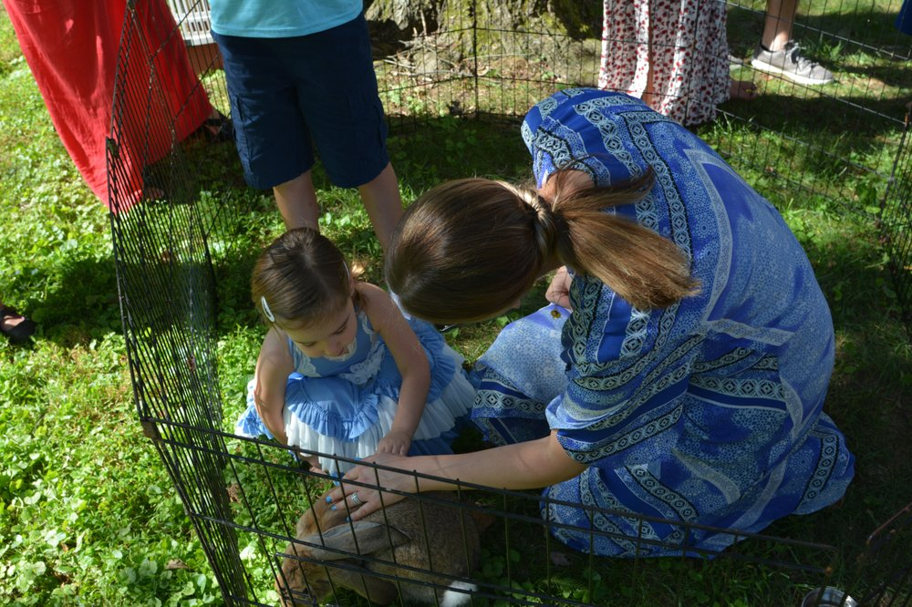 Squeals On Wheels Petting Zoo