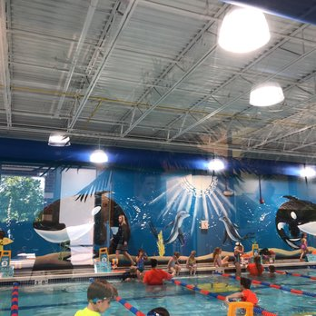 Goldfish Swim School Wake Forest 11 Photos Swimming Lessons Schools 14460 Falls Of Neuse