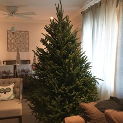 Mr Jingle's Christmas Trees - West Palm Beach - 29 Photos - Christmas Trees - 419 Lakeview Ave, West Palm Beach, FL - Phone Number - Yelp