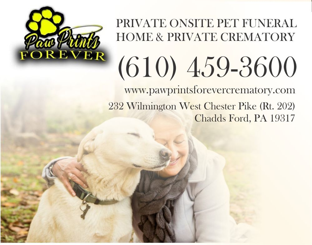 Paw Prints Forever: 232 Wilmington West Chester Pike, Chadds Ford, PA