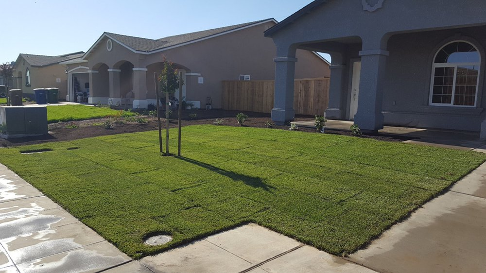 Mission View Landscaping