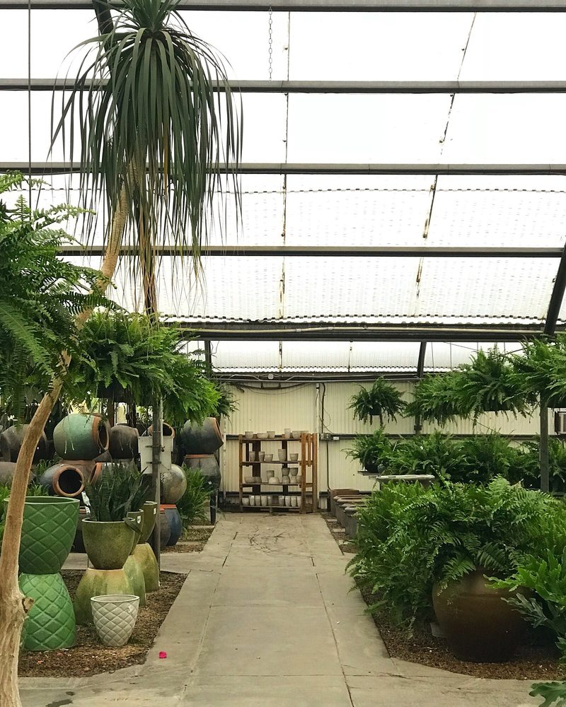 Tropical Greenery Nursery Stores: 7421 Grapevine Hwy, North Richland Hills, TX