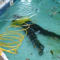 Leak Professionals Pool Amp Hot Tub Service Lewisville