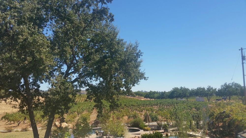 Nine Gables Vineyard Amp Winery 14 Photos Amp 14 Reviews