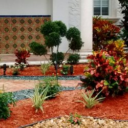 Tropical Tree And Landscape 13 Photos 11 Reviews Tree Services