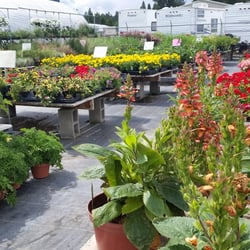 Photo Of Garden Springs Nursery And Fruit Stand Spokane Wa United States