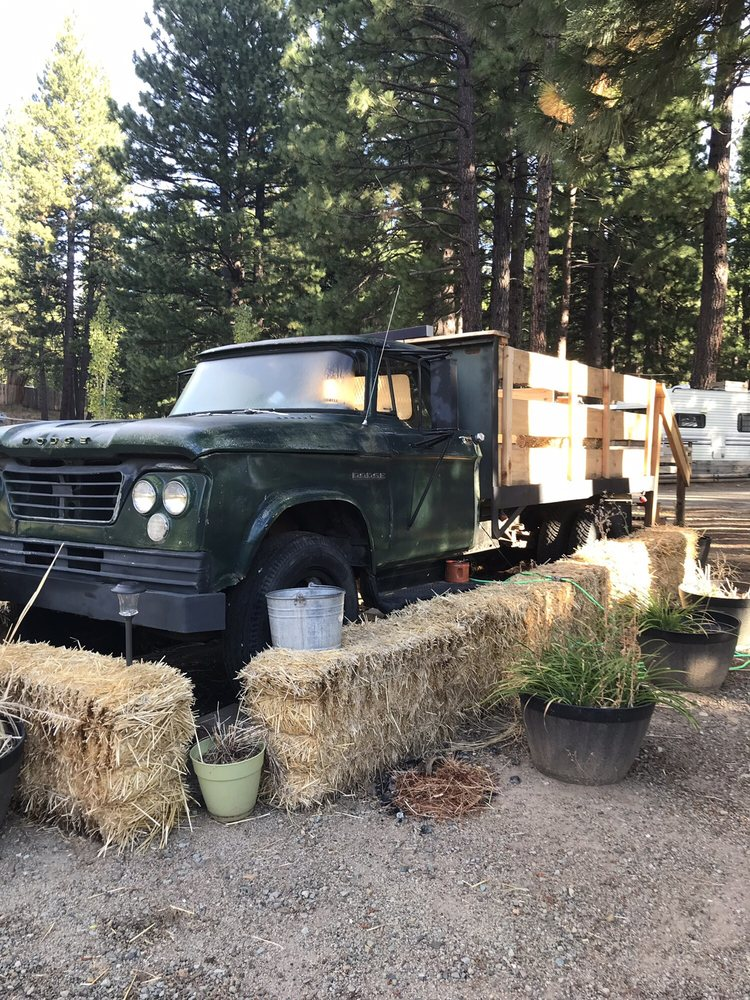 Dream Catcher Campground & Lodge: 70099 Hwy 70, Graeagle, CA