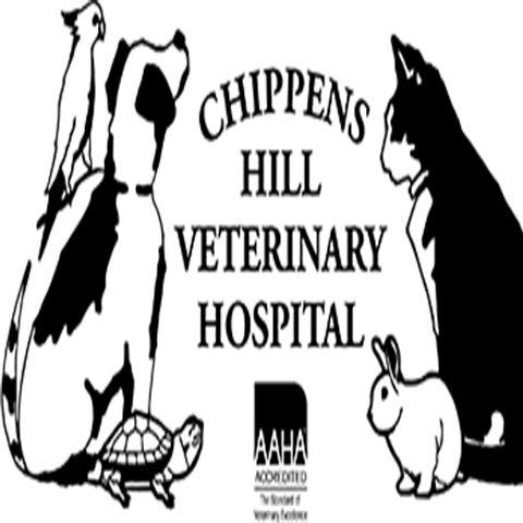 Chippens Hill Veterinary Hospital: 595 Clark Ave, Bristol, CT