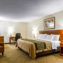 Comfort Inn At The Zoo 26 Photos 28 Reviews Hotels 2920 S