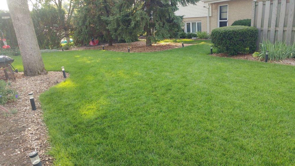 Revive Your Lawn: 4828 Lawndale Ave, McCook, IL