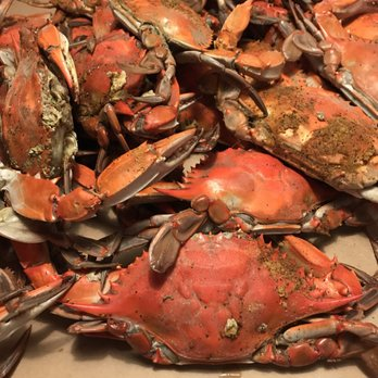 Photo Of Blue Crab Bethany Beach De United States