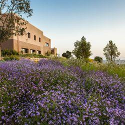 Photo Of Santa Barbara Botanic Garden   Santa Barbara, CA, United States