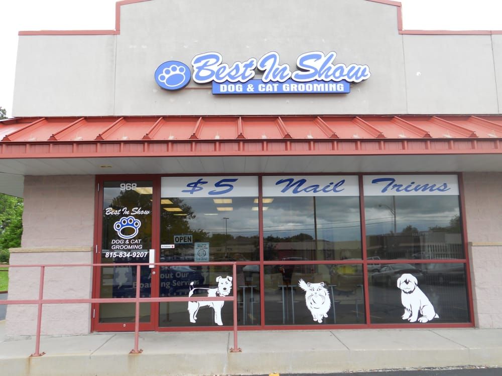 Best In Show Dog Grooming Lockport Il