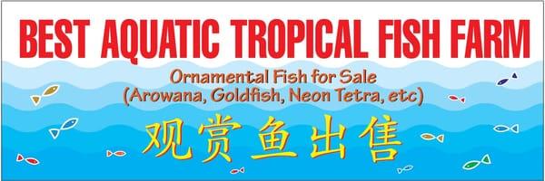 Best aquatic tropical fish farm get quote pet shops for Florida tropical fish farms