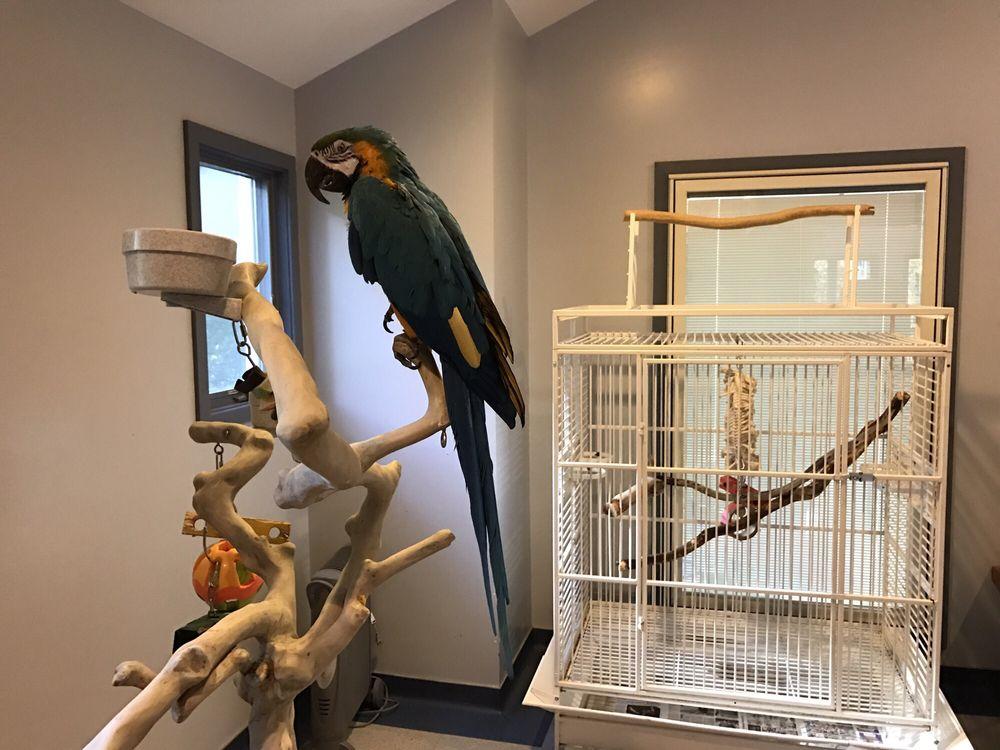 Animal & Bird Health Care Center