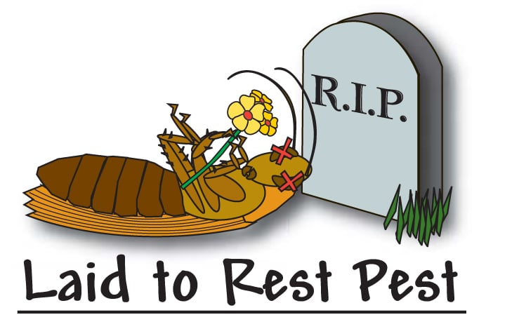 Laid to Rest Pest Control Service: 795 North St, Luzerne, PA