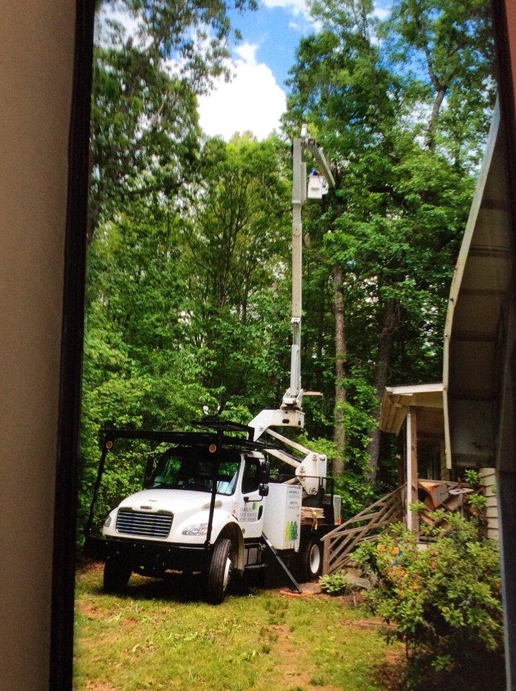 Carolina Tree Service: 2233 Bellemont Alamance Rd, Burlington, NC