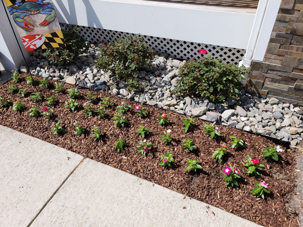 BMA Landscaping