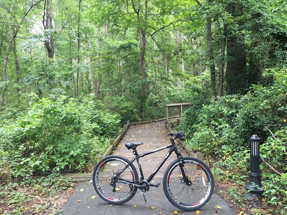 Doko Meadows Park: 100 Alvina Hagood Cir, Blythewood, SC