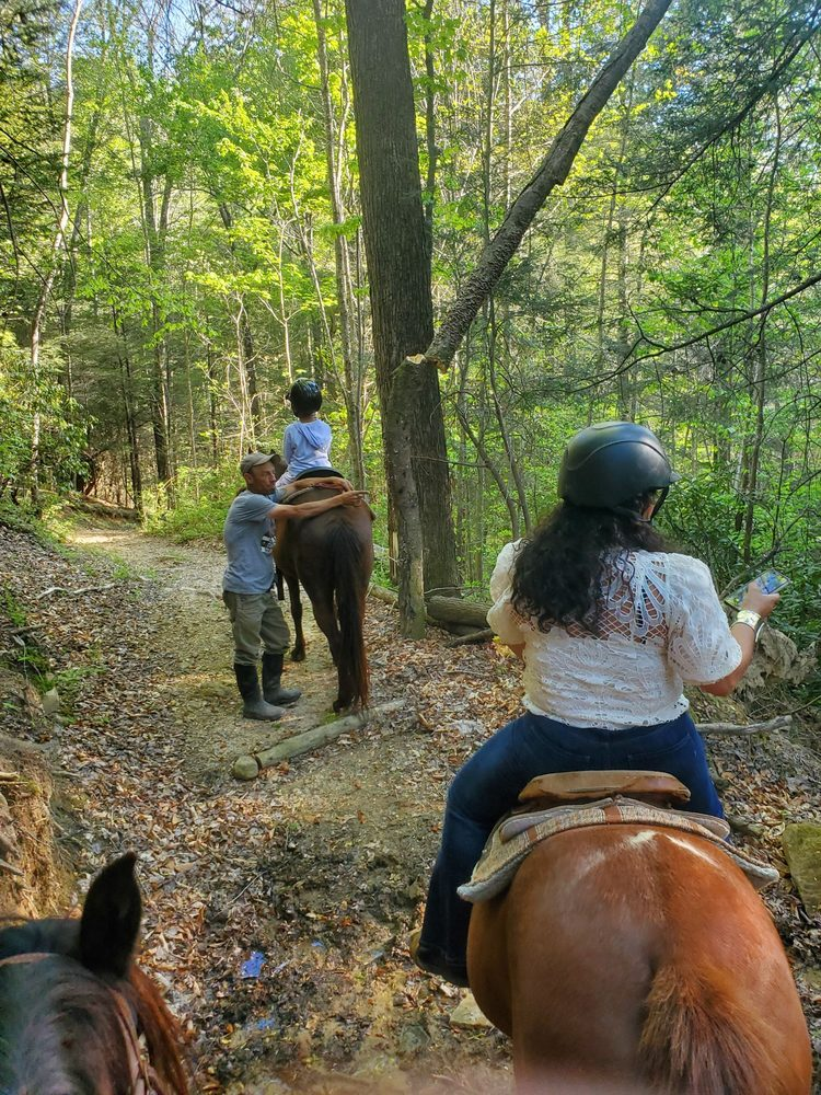 Whisper Valley Riding Stables: 5695 Hwy 52 W, Beattyville, KY