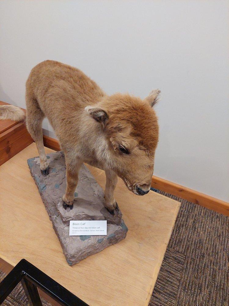 Social Spots from National Buffalo Museum