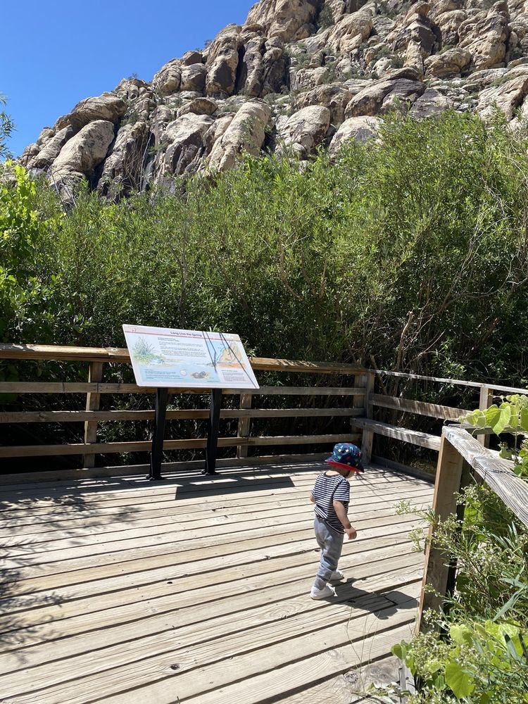 Lost Creek -  Children's Discovery Trail: 8221 W Charleston Blvd, Las Vegas, NV