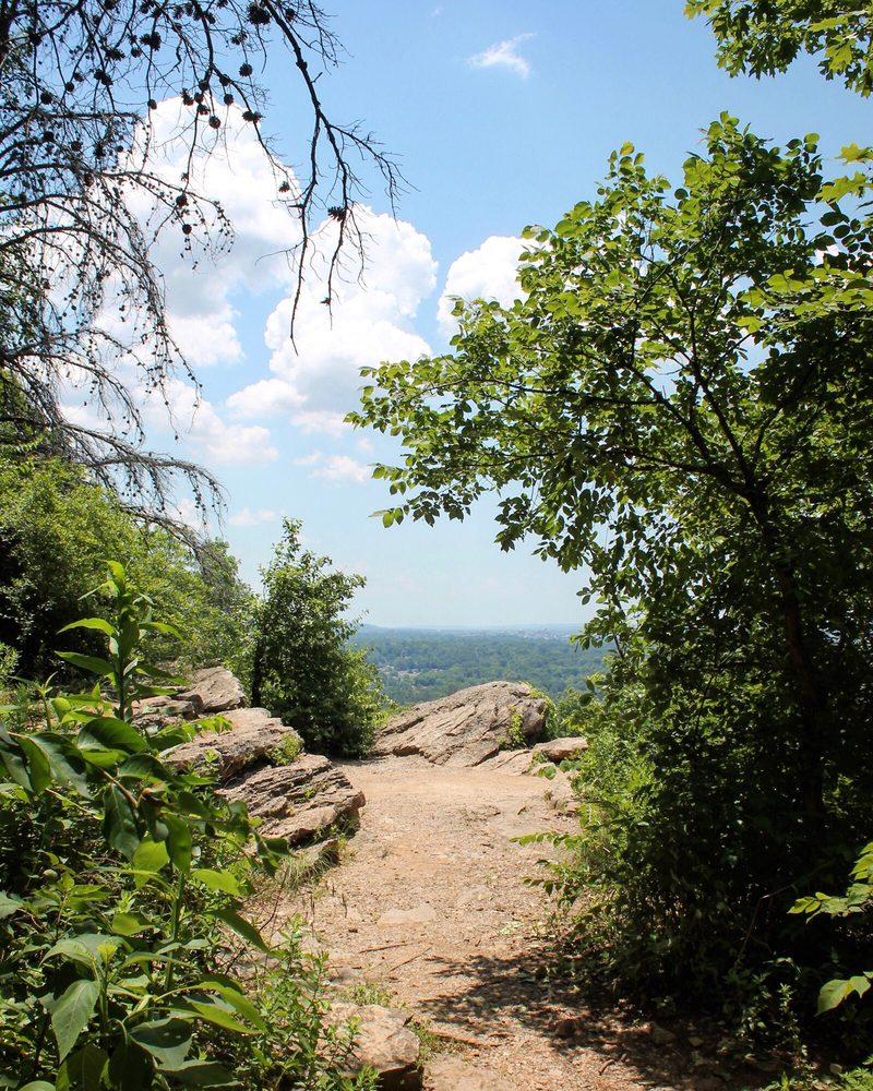 Ruffner Mountain