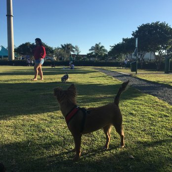 Fun Dog Park Doral