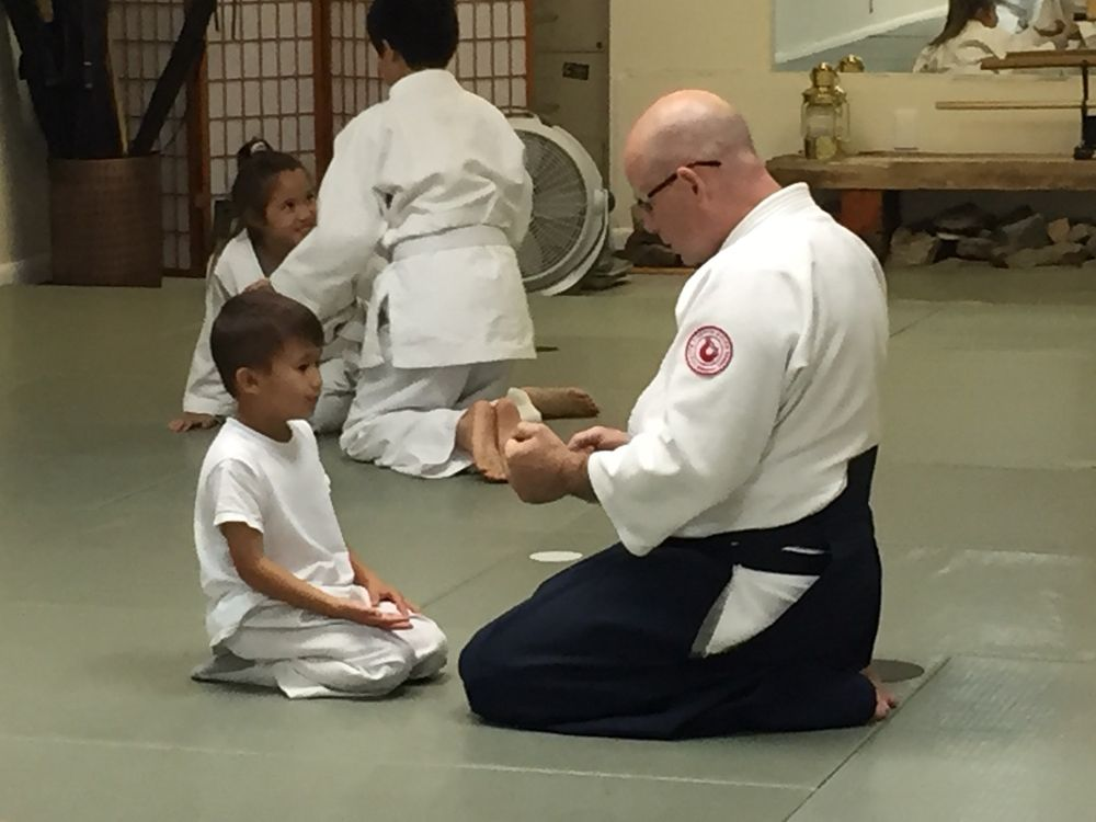 Heaven and Earth Aikido: 688 Spring St, Herndon, VA