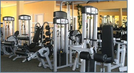 Palestra Gym