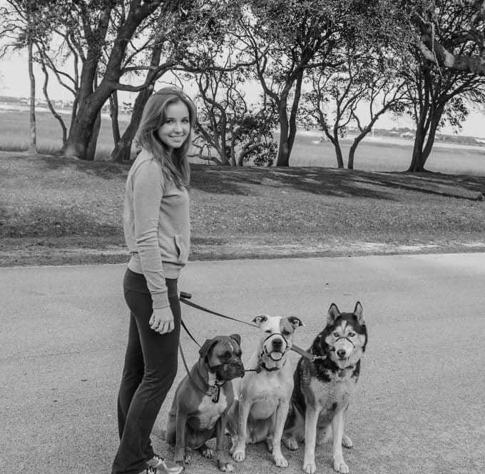 Socal Dog Training Reviews
