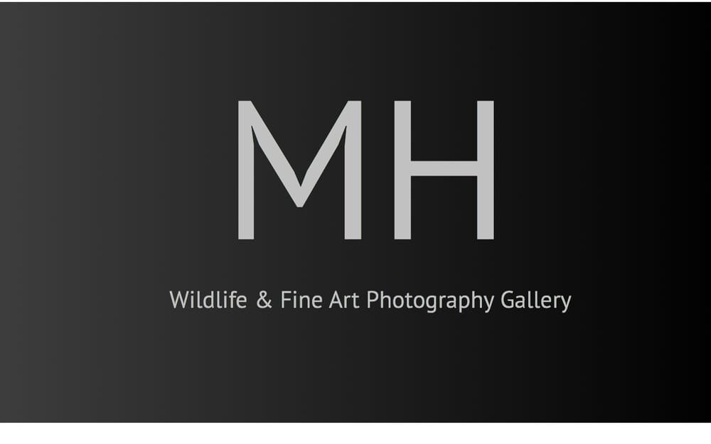 Marc Harris Wildlife  & Conservation Photography