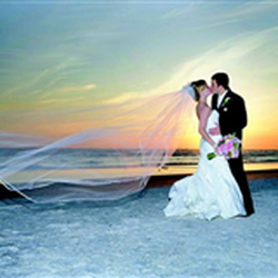 Photo Of Two Doves In The Sand Corpus Christi Tx United States Wedding