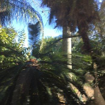 Photo Of USF Botanical Gardens   Tampa, FL, United States. Beautiful