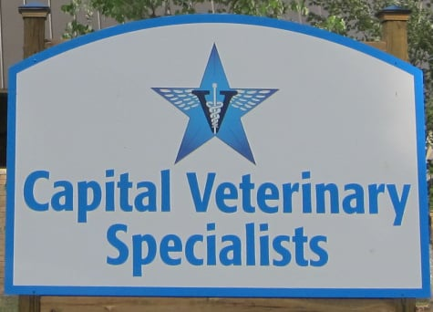 capital veterinary specialists   send message   vets