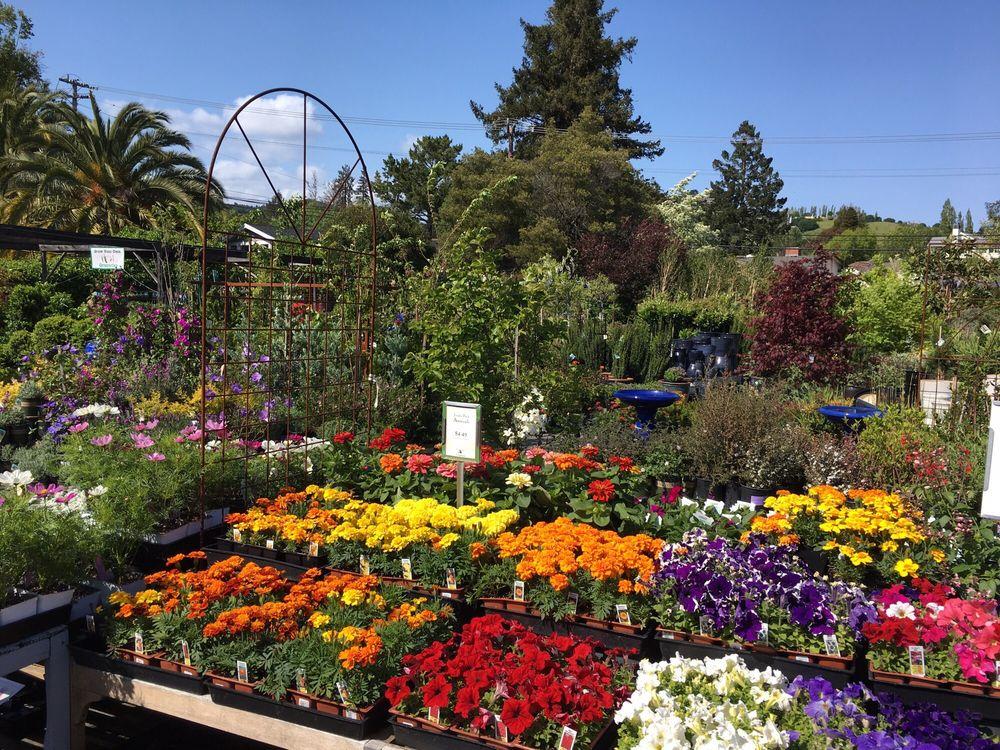 Sloat Garden Center: 401 Miller Ave, Mill Valley, CA