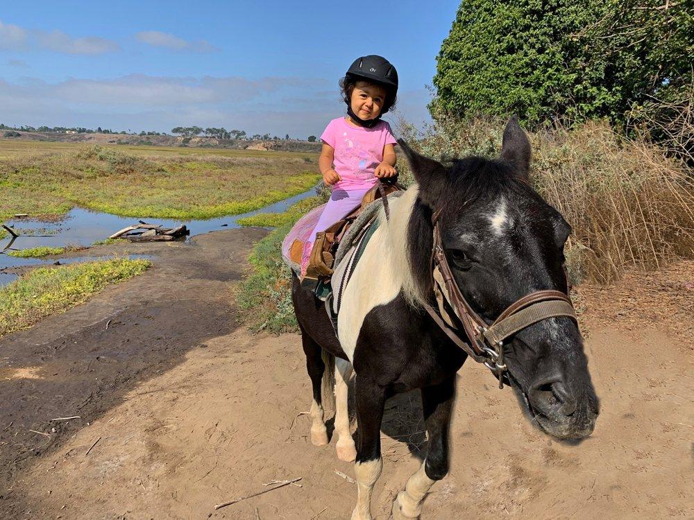 Blue Ribbon Saddle Club: Newport Beach, CA