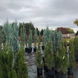 Photo Of Cloverdale Nursery Turf Farm Boise Id United States