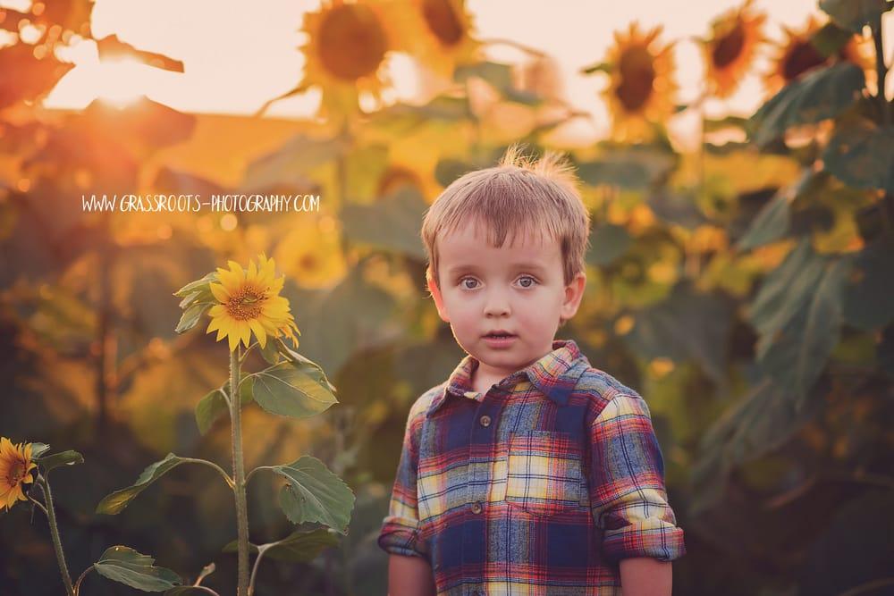 Grassroots Photography: Prairie Village, KS