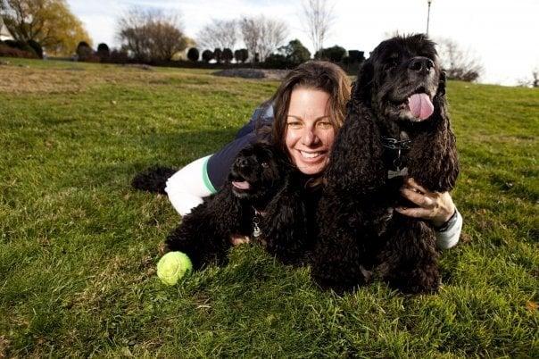 Wannagoout? Dog Walking & Pet Sitting: 535 Shawmut Ave, Boston, MA