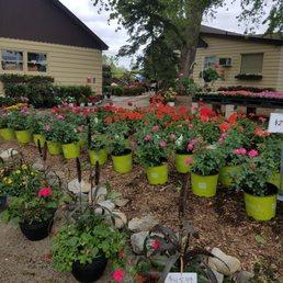 Buschia S Greenhouse Closed Nurseries Amp Gardening