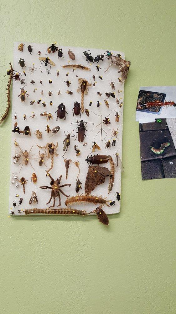 Ricks Pest Control LLC: 270 E Duval Rd, Green Valley, AZ