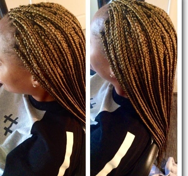 27 Hair Color Braids Find Your Perfect Hair Style