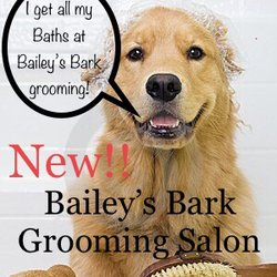 Baileys Bark 16 Photos Dog Walkers 6566 Seneca Tr Mentor Oh