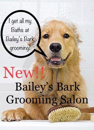 Bailey's Bark: 30544 Euclid Ave, Wickliffe, OH