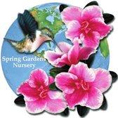 Photo Of Spring Gardens Nursery Tx United States